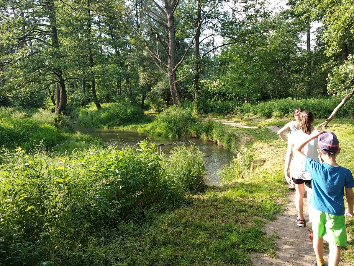 Użytek ekologiczny Dolina Prądnika