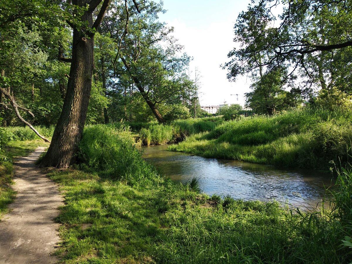 Dolina Prądnika - zakręt rzeki