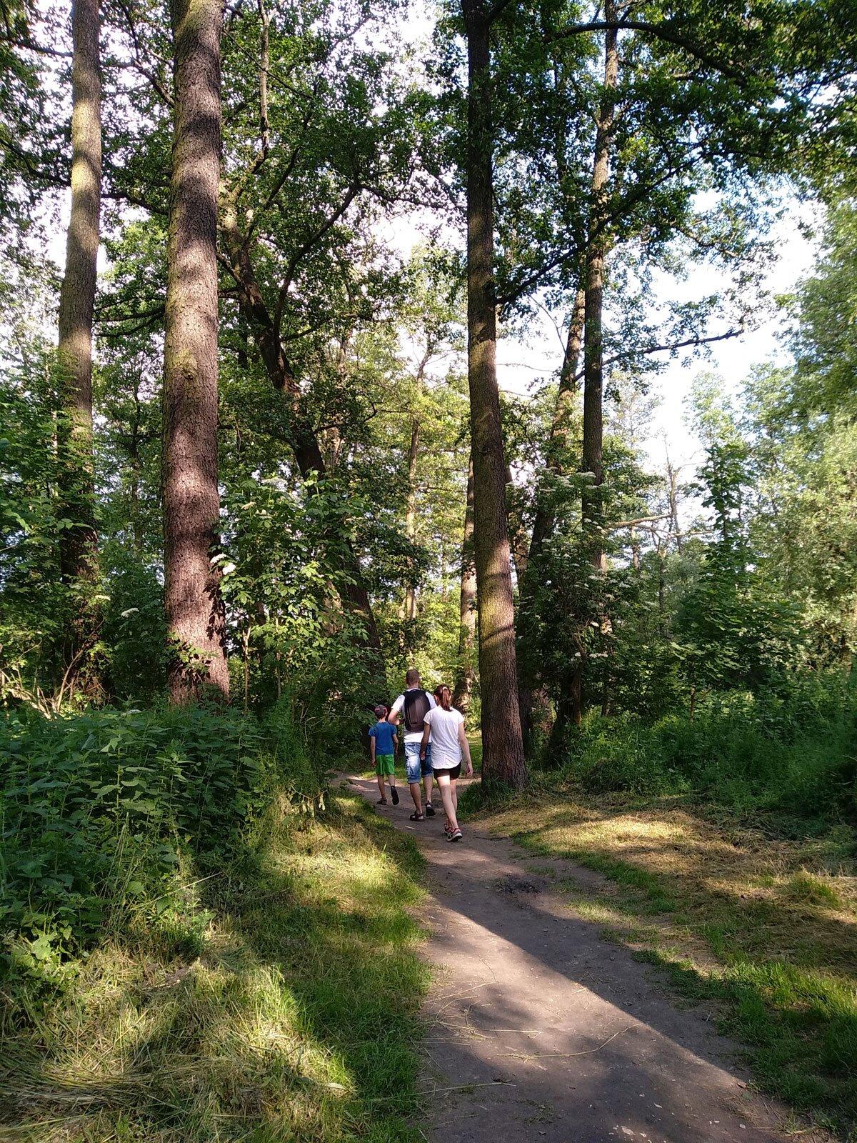 Spacer po ścieżce przy rzece Prądnik