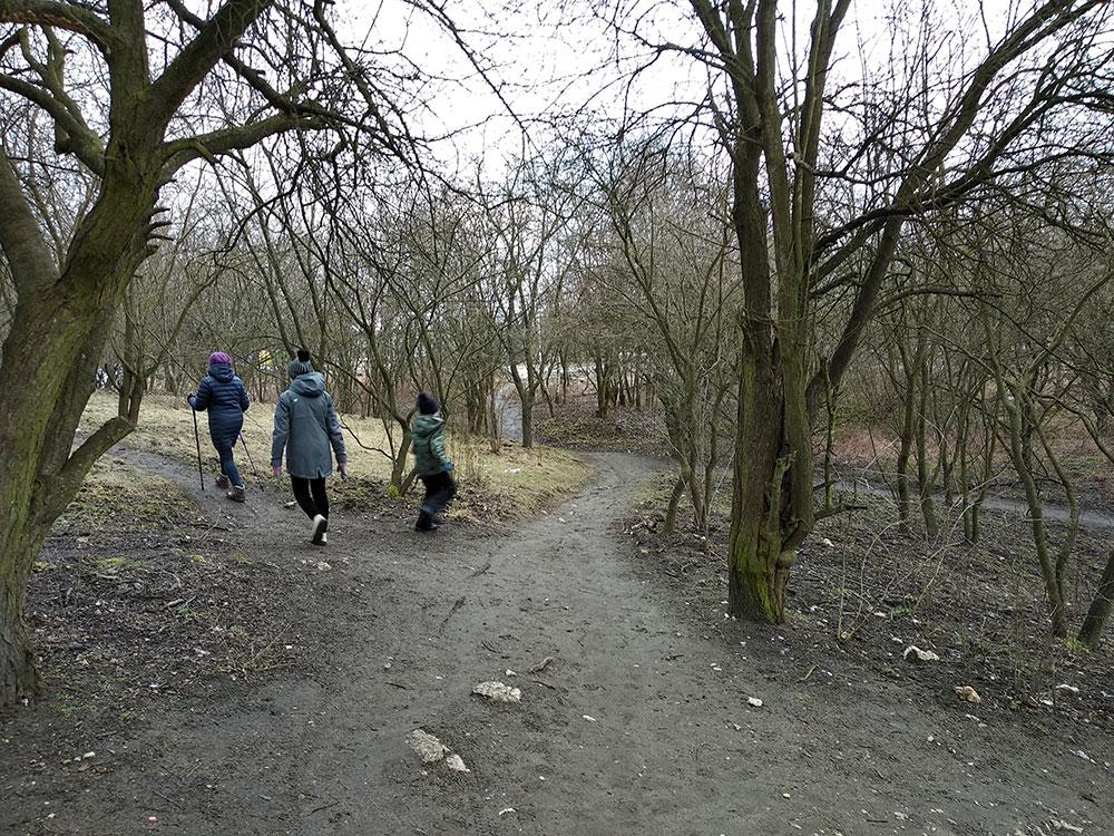 Ścieżki na Zakrzówku
