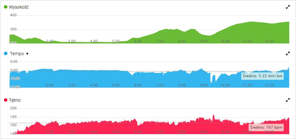 Wykresy z biegu